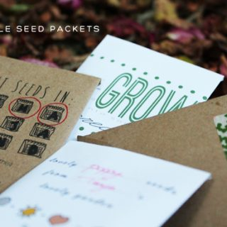 Harvesting Seeds – Free seed packet printable