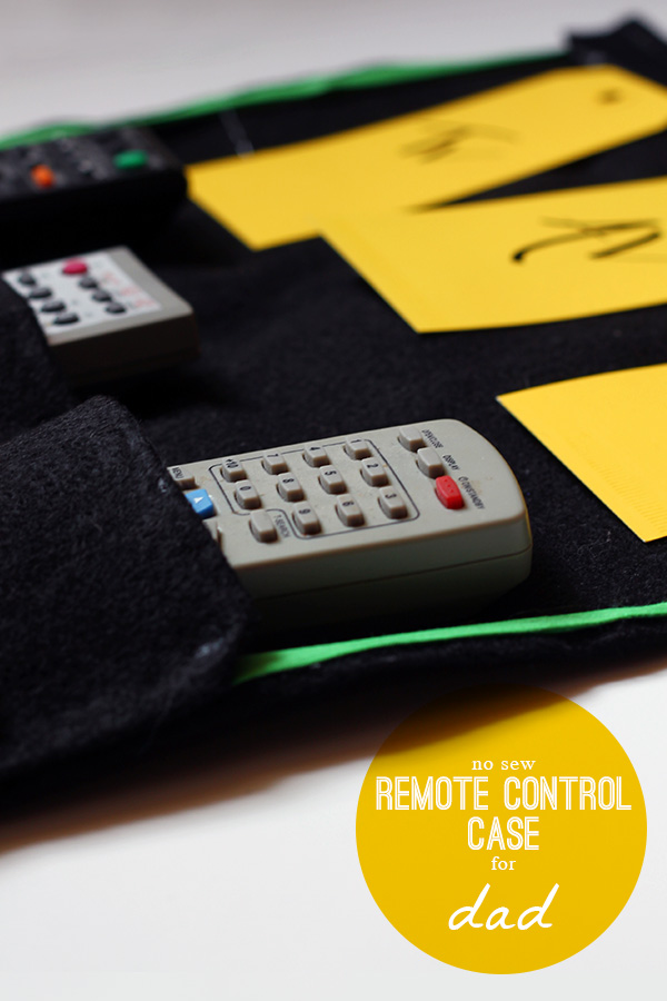 DIY No Sew Remote Control Case | Squirrelly Minds