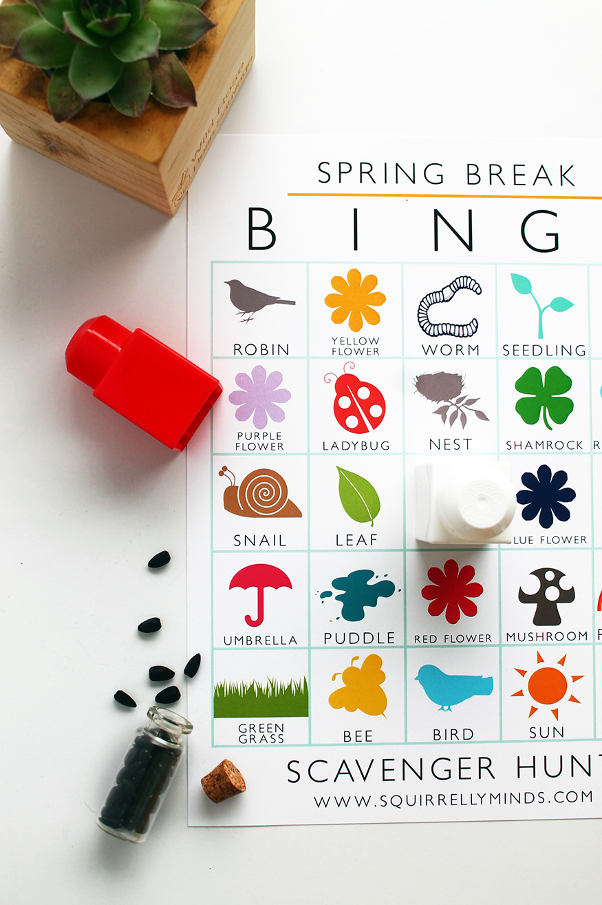 Keep the kiddos entertained this spring break with this printable spring break bingo scavenger hunt sheet | Squirrelly Minds