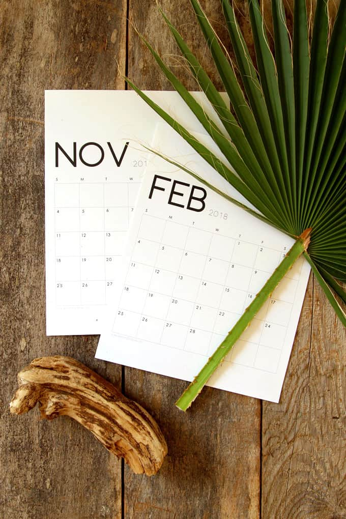 40+ Free Printable 2018 Calendars | Squirrelly Minds - Photo by A Piece of Rainbow