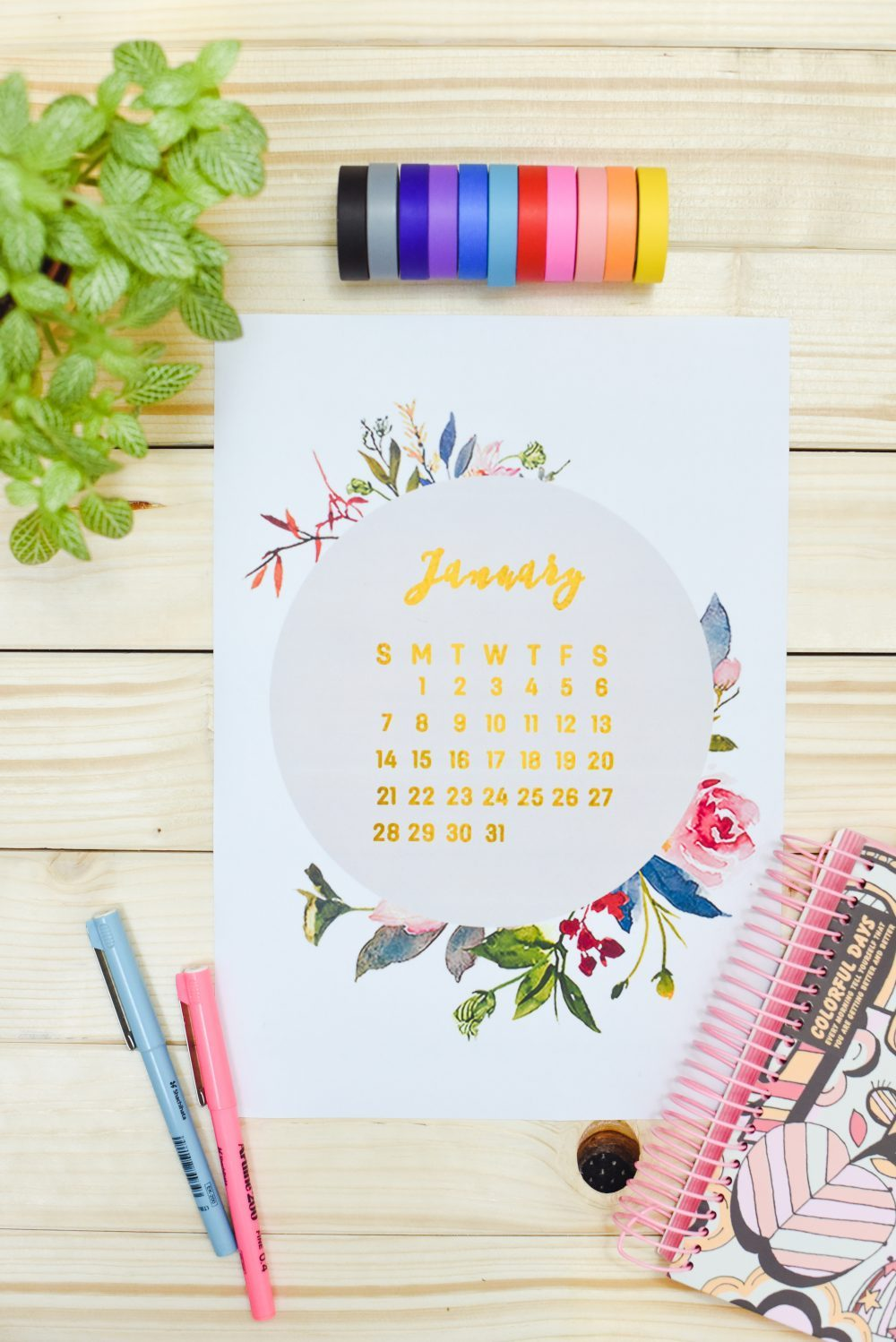 40+ Free Printable 2018 Calendars | Squirrelly Minds - Photo by Enthralling Gumption