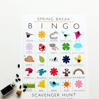 Printable Spring Break Bingo Scavenger Hunt Sheet